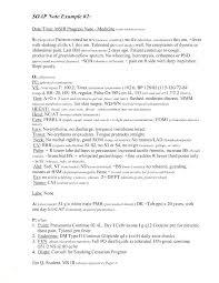 Program Notes Template 14 Sample Nurses Notes Agenda Template