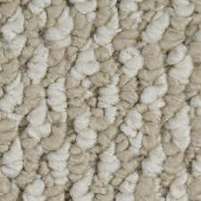 home decorators collection carpet sample bayfield color
