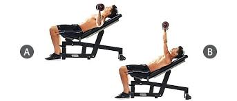 Barbell Reverse Grip Decline Bench Press  Exercise Database Decline Barbell Bench
