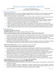Classy Management Consultant Resume Summary For Change Sample
