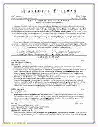 Certified Resume Writer Cost Luxury Professional Resume Writers