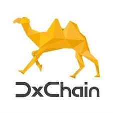 Dxchain Token Dx Price Marketcap Chart And Fundamentals Info Coingecko