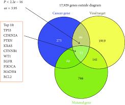 Bacteria And Viruses Venn Diagram Viral Targets Enriched In Cancer Related Genes Venn Diagram