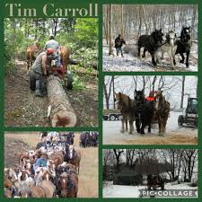 draft horse journal tim carroll tim sparrow gifts for draft horse fans by 18 world clydesdale show for 12 07 17