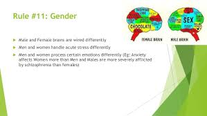 brain rules 15 rule 11 gender  male and female brains are wired