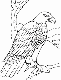 Eagle Coloring Pages Best Of Bald Eagle Color Page Nest Drawing For