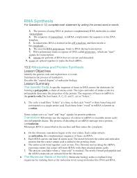 dna rna worksheet worksheets library and print dna rna and protein synthesis essay