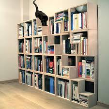 cat friendly shelf