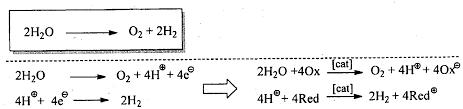 electrolysis of salt water half equations tessshlo