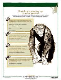 Comparing Humans to Chimpanzees Activity Worksheet - Woo! Jr. Kids ...
