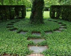 garden ground cover. Awesome Design Garden Ground Cover Our With Hosta And E