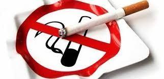 opinion essay smoking ban opinion essay smoking ban