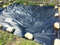 black plastic sheeting for gardens growg black plastic sheeting for gardens uk