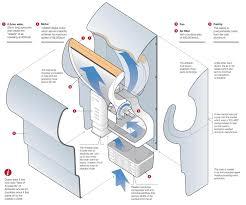 infographics coelho
