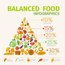 Food Group Pyramid Chart Paleo Pyramid Chart Stock Vectors Royalty Free Healthy