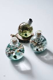 diy terrarium lighting lovely marimo moss ball light bulb terrarium by ben glenda longenbaker