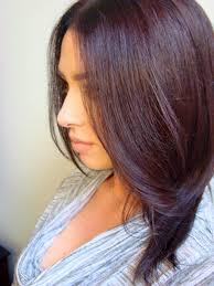 Professional Salon Organic Permanent Hair Color