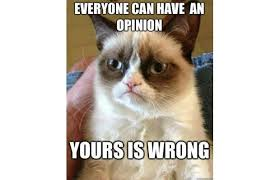 Image result for grumpy cat and snow