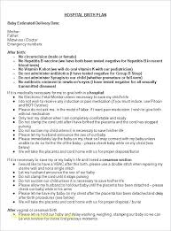 Free Birth Plan Templates Baby Birth Plan Template Excellent Pool Free Due Date Danielmelo Info