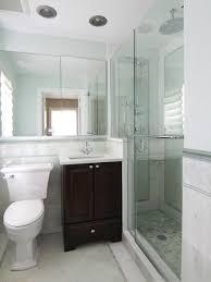 Our 50 Best Small Master Bathroom Ideas U0026 Decoration Pictures  HouzzSmall Master Bathroom Renovation