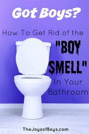 How To Get Urine Smell Out Of Bathroom Gorgeous How To Get Rid Of The Boy Smell In Your Bathroom