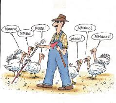 Small Picture thanksgiving jokes cartoons Adultcartoonco