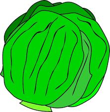 lettuce clipart.  Lettuce Whole Lettuce Clip Art Intended Clipart C
