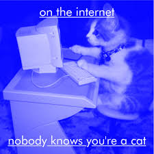 on the internet nobody knows you re a cat. Unique The On The Internet Nobody Knows Youu0027re A Cat To On The Internet Nobody Knows You Re A Cat E