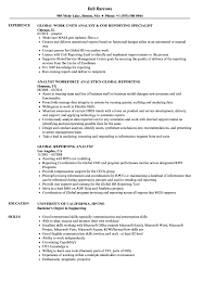 Download Global Reporting Analyst Resume Sample as Image file
