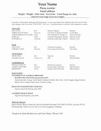 Word 2007 Resume Templates Microsoft Word 24 Resume Template Unique 24 Unique Pics Functional 20