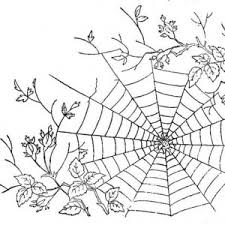 Small Picture Very Large Spider Web Coloring Page Color Luna