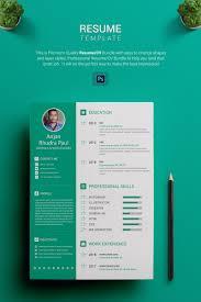 Graphic Designer Resume Template Samplerd Format Free Download Cv
