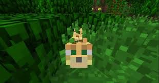 tame baby ocelot minecraft. Perfect Tame Ocelot For Tame Baby Minecraft