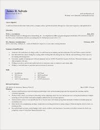 Entry Level Staff Accountant Resume Examples Free Resume Examples