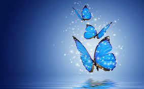 Blue Butterfly Desktop Wallpapers - Top ...