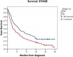 Stage 4 Lung Cancer Survival Rate The Cost Of Hospital Treatment Of Advanced Stage Lung Cancer