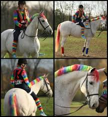 Pony Costume Ideas Rainbow Brite Pony Looking For Halloween Horse Costume Ideas
