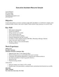 Professional Skills Resume Summary For Templates Customer Service ...