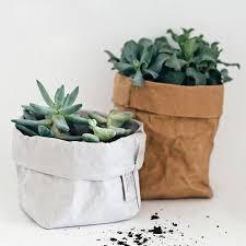 Paper Flower Pots Us 2 2 13 Off Mini Succulents Kraft Paper Flower Pot Cover Washable Storage Bags Plants Flowerpot Bag Children Room Sundries Organizer Pouch In