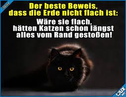 Shiny1jux Lustige Sprüche Witze Memes Nur Katzen Wären übrig