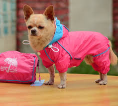 Best Dog Raincoat For Small Dogs Ideas And Get Free Shipping