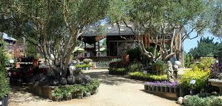 cottage garden design. Wonderful Garden Cottage Gardens Of Petaluma Intended Garden Design