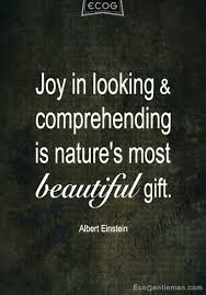 Looking Beautiful Quotes Best of ♂ Quotes By Albert Einstein Joy In Looking And Comprehending Is