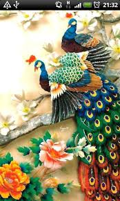 peacock wallpaper for mobile. Wonderful Peacock Download Colorful Peacock Live Wallpaper  Inside For Mobile