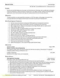 Resume Summary Or Objective Best Of Java Resume Summary Examples Unique Java Developer Resume Sample