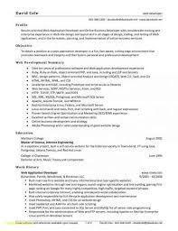 Software Developer Resume Sample Download Best Of Java Resume Summary Examples Unique Java Developer Resume Sample