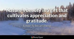 Appreciating Beauty Quotes