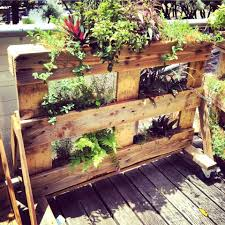 Small Picture Plant Stand Outdoor Freetanding Herb Gardenstanding Garden Plans