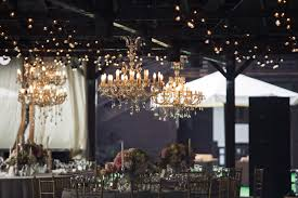 i want to fly from the chandelier firefly rectangular chandelier