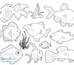 Ocean Animals Color Pages Sea Animal Coloring Pages Printable Free Drfaull Com